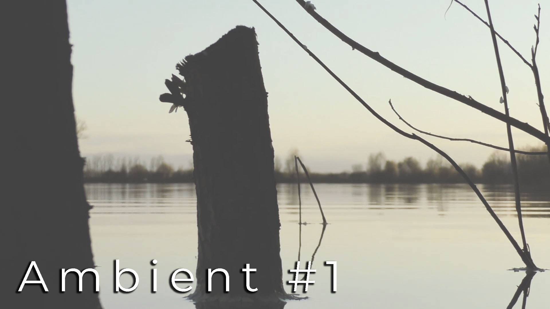 Ambient#1